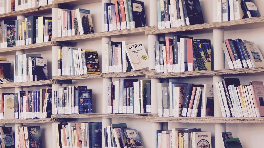1001 livres